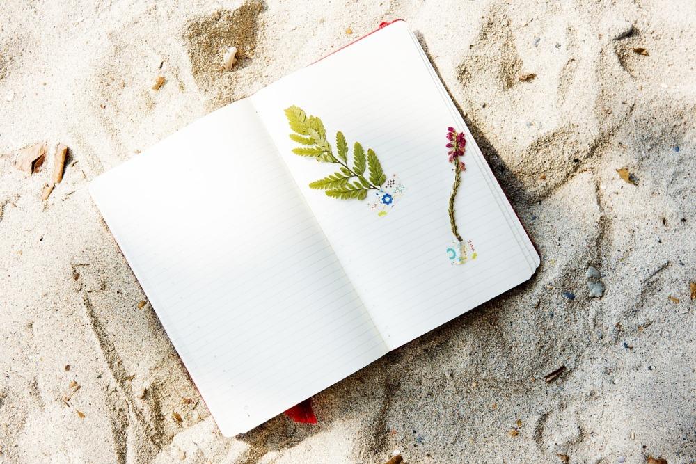 beach-2280942_1280